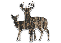 Camo Buck and Doe Decal